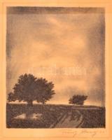 Franz Abony (?-?): Tájkép fával, rézkarc, papír, jelzett, paszpartuban, üvegezett fa keretben, 22,5×17,5 cm