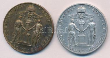 1909. Testvériség Sport Egyesület Br és Al díjérem pár (38mm és 39mm) (2xklf) T:2