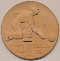 Matzon Frigyes (1909-1986) 1949. Budapesti Tekéző Alszövetség kerámia emlékérem (75mm) T:2