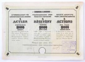 Budapest 1923. Mezőgazdasági Ipar-Részvénytársaság öt darab részvénye egyenként 10.000K-ról, három nyelven, szárazpecséttel, bélyegzéssel és szelvényekkel T:II-,III