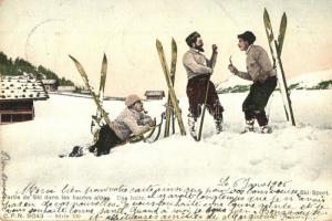 Partie de Ski dans les hautes alpes, Ski Sport / winter sport, men with skis (EK)