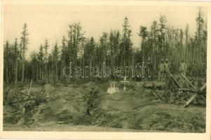 Rozstríleny les na vysine wiszkowského prusmyku / Zerschossener Wald auf der Wiszkower Passhöhe / WWI Austro-Hungarian K.u.K. military soldiers in a shattered forest near the Wiszkower Pass