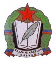 ~1960-1970. Bajza Gimnázium - Hatvan zománcozott fém jelvény (28x31mm) T:2