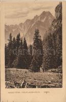 Tatra, Ganek, Poduplaszki valley 'Turistaság és Alpinizmus', Tátra, Poduplaszki völgy 'Turistaság és Alpinizmus'