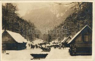 Tátra, Magas Tátra, Vysoké Tatry; Krmenie jelenov / Hirschfütterung / Szarvas etetés / deer feeding