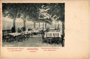 Budapest II. Hűvösvölgy, Holtzspach-féle Vigadó az Orvvadászhoz, kerthelyiség. Ifj. Holtzspach Nándor kiadása