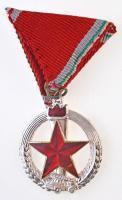 1974. Tűzbiztonsági Érem ezüst fokozata ezüstözött és zománcozott Br kitüntetés mellszalagon T:1-