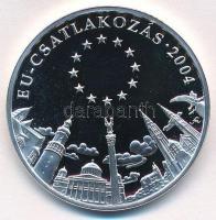Fritz Mihály (1947- ) DN EU-csatlakozás 2004 / Magyarország Történelme Ag emlékérem (15g/0.500/34mm) T:PP