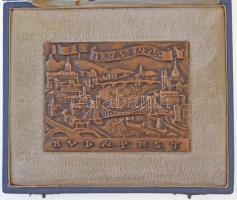 Madarassy Walter (1909-1994) 1973. Budapest 1873-1973 Centenáriumi Br plakett eredeti dísztokban (78x101mm) T:1-