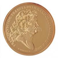 DN Magyar Aranyóriások - II. Rákóczi Ferenc érem, a szabadságharc kitörésének emlékére 1703 aranyozott Cu utánveret T:PP