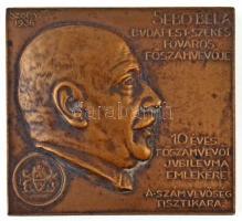 Sződy Szilárd (1878-1939) 1936. Sebő Béla Budapest Székesfőváros főszámvevője - 10 éves főszámvevői jubileuma emlékére - A számvevőség tisztikara Br emlékplakett, hátoldalán LUDVIG gyártói jelzéssel (54x49mm) T:2