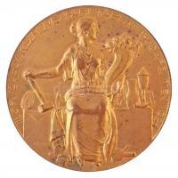 1928.Telcs Ede (1872-1948) 1928. III. Országos Kézművesipari Tárlat Budapesten - aranyérem Bereczky Sándor esztergályosnak aranyozott Br emlékplakett (90,26g/60mm) T:1- patina Hungary 1928. 3rd National Crafts Exhibtion - gold medal for turner Sándor Bereczky gilt Br memorial plaque (88,37g/54mm) Sign.: Ede Telcs C:AU patina