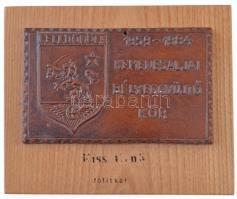 1984. Celldömölk - 1959-1984 Kemenesaljai Bélyeggyűjtő Kör egyoldalas Br plakett, fa talpra erősítve (129x79mm) T:2