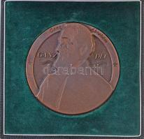 2003. Ganz Díj Br díjplakett eredeti dísztokban (89mm) T:1-