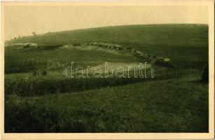 Öst. Schützengraben an der Zlota Lipa 1915 / Rak. strelecky zákop na Zloté Lipé 1915 / WWI Austro-Hungarian K.u.K. military, trenches along the Zolota Lypa River (Ukraine)