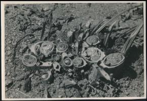 1935 Kinszki Imre (1901-1945) budapesti fotóművész pecséttel jelzett vintage alkotása, a szerző által feliratozva (Kaszálás után), 11,5x17 cm