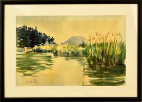 Andruskó jelzéssel: Balaton parti nádas. Akvarell, papír, üvegezett keretben, 25×39 cm
