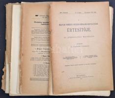 1905-1912 A Magyar Nemzeti Múzeum Néprajzi Osztályának Értesítője. Az Ethnographia melléklete. VI.,IX-XIII. évfolyamok 10 db szórványszáma. Szerk.: Dr. Semayer Vilibáld. Bp.,1905-1912, Magyar Nemzeti Múzeum, (Hornyánszky Viktor-ny.), 80 p.+1 t.+169-248 p.+1 t.+249-328+4 p.+1 t.+4+153-224 p.+65-128 p.+7-13 t.+129-252 p.+ 2 (színes)+14-23 t. 129-276 p.+1 t.(színes)+81-220 p.+IV t.(színes)+157-279+4 p. Papírkötésben, szakadozott széteső állapotban.+1907 Ethnographia. Magyar Néprajzi Társaság értesítője. XVIII. évf. 1.,3. füzete. Szerk.: Munkácsi Bernát-Dr. Sebestyén Gyula. Bp.,1907, Magyar Néprajzi Társaság,64+129-192 p. Papírkötésben, szakadozott, széteső állapotban.