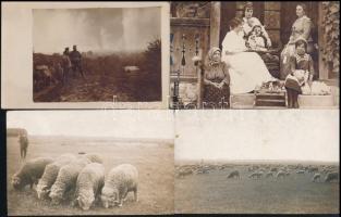 Kis vegyes fotó tétel: életképek, családi képek, összesen 9 db, 9×14 cm