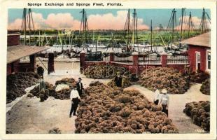 Tarpon Springs, Florida, Sponge Exchange and Sponge Fleet