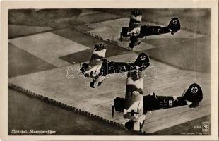 Henschel Kampfeinsitzer 969 A/B/C, Luftwaffe / German military aircrafts (fa)