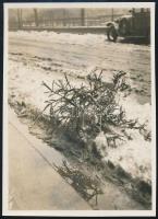 1931 Kinszki Imre (1901-1945) budapesti fotóművész hagyatékából jelzés nélküli vintage fotó (Karácsonyfa), 8,5x6,1 cm