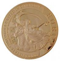 Ciprus 2008. Europa aranyozott fém emlékérem (70mm) T:PP Cyprus 2008. Europa gilt metal commemorative medal (70mm) C:PP