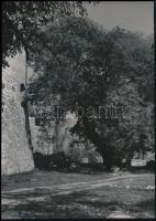 cca 1960 Budapesti épületek, városképek, műemlékek, dr. Sevcsik Jenő (1899-1996) hagyatékából 4 db jelzés nélküli vintage fotó, 18x24 cm és 28x19,5 cm