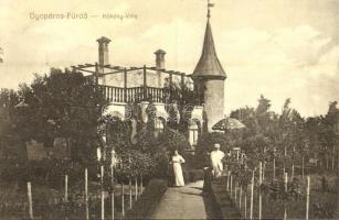 1915 Gyopáros-fürdő (Orosháza), Kökény villa