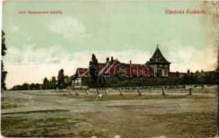 Écska, Ecka; Gróf Harnoncourt kastély. Holländer Samu kiadása / castle (EK)