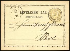 1871 2kr díjjegyes levelezőlap / PS-card MOZGÓ POSTA / TEMESVÁR 4 - Pest