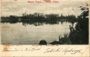 1902 Tátra, Magas Tátra, Vysoké Tatry; Csorba-tó, szálloda, villa. Divald Adolf, Bártfa. 9. / Strbské pleso / Csorbaer See / High Tatras, lake, hotel, villa (fl)