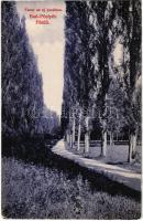 1911 Pöstyén, Pistyan, Piestany; Fasor az új parkban. Kiadja Laufer Nándor 26. sz. / alley of trees in the new park (kissé ázott sarkak / slightly wet corners)