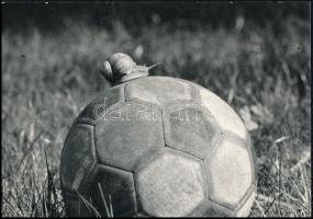 1976 Gábor Jánosné: Ilyen a magyar foci, feliratozott vintage fotó, 16x23 cm