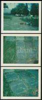 Vadnay László, a Hacsak és Sajó szerzőjének sírja, 4 db fotó, 9×11 cm