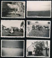 1933-35 Nagytétényi tájak, életképek, a képek hátoldalon feliratozva, 14 db, 9x6 cm