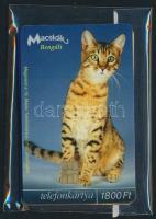 4 db klf Macskák telefonkártya, közte 2000 példányos