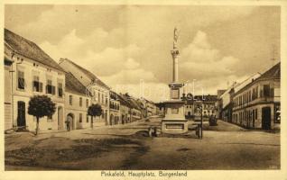 Pinkafő, Pinkafeld; Fő tér, szobor, üzlet. Karl Strobl kiadása / Hauptplatz / main square, monument, shop