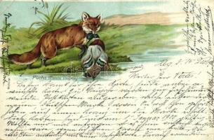 1899 Fuchs (Canis vulpes) / Fox. Verl. v. O. Schulte No. 7. litho (EB)