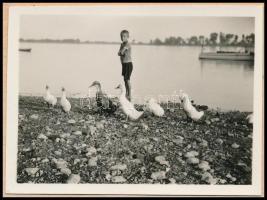 cca 1930 Kinszki Imre (1901-1945) budapesti fotóművész hagyatékából jelzés nélküli vintage fotó (Kacsákkal a Duna-partján), albumból kivágott kartonlapra felragasztva, 4,3x6 cm
