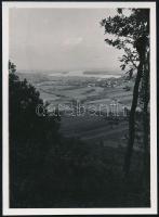 cca 1935 Kinszki Imre (1901-1945) budapesti fotóművész hagyatékából jelzés nélküli vintage fotó (Tájkép fával), 8,8x6,4 cm