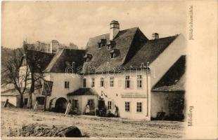Mödling, Höldrichsmühle, Gasthof den Carl Lichtenauer zur Höldrichsmühle / mill, inn, guest house, restaurant