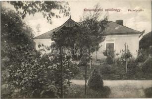 Kiskomárom (Zalakomár), Szőlőhegy, Péczely villa. Berger Samu kiadása