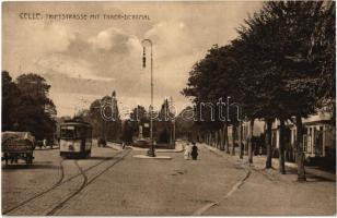1915 Celle, Triftstrasse mit Thaer-Denkmal / street, tram, statue, horse cart