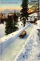 Davos Schatzalp Bobbahn / Winter sport in Davos, bobsleigh, bobsled, sledding people. Wehri A.-G. 26334. (EK)