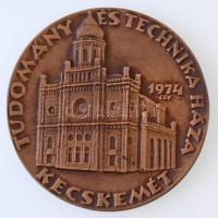 Csúcs Viktória (1934-) 1974. Tudomány és Technika Háza Kecskemét Br plakett (88mm) eredeti tokban T:1
