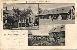 1907 Dunakeszi-Alag, Lóversenytér, Tréner lakház és verseny istállók. Hadl Fülöp kiadása