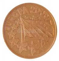 2000. Europa 2000 aranyozott fém emlékérem (40mm) T:PP  2000. Europa 2000 gold plated commemorative medallion (40mm) C:PP