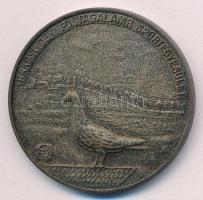 ~1900. Rákosvidéki Postagalamb Sportegyesület ezüstpatinázott Br sport emlékérem (40mm) T:1-
