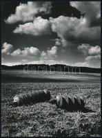 cca 1970 Gebhardt György (1910-1993) budapesti fotóművész hagyatékából, jelzés nélküli, vintage fotóművészeti alkotás (Tárcsák), 23,8x17,6 cm